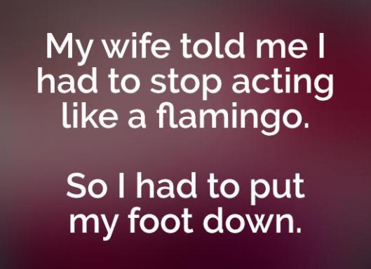 flamingo-fun-joke